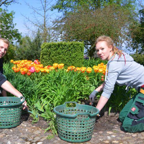 Garten Und Landschaftsbau Ausbildung Voraussetzungen: Kreis Steinfurt